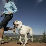 Boldogságterv #1: Mozogj rendszeresen!
