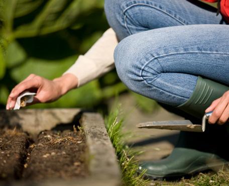 kertészkedés 2