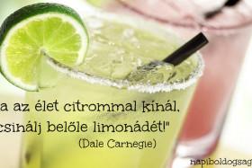 Csinálj limonádét! ;-)