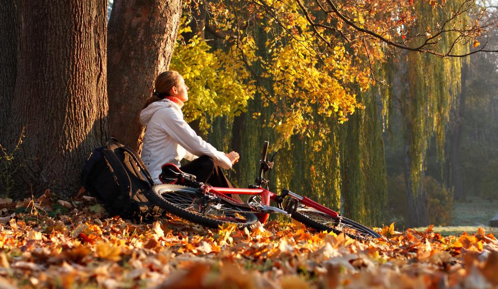 őszi nyugalom