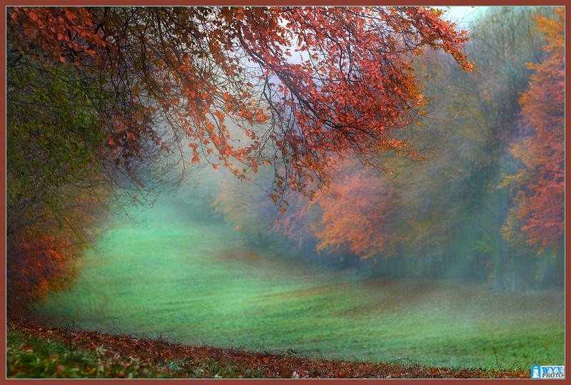 őszi sínpálya
