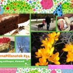 VasárnaPillanatok #54: Boldog szülinapot, Kismanó!