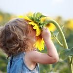 Boldog otthon #9: Légy illatbarát!