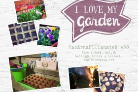VasárnaPillanatok #56: Imádom a kertem!
