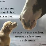 Csak az igaz barátok…
