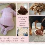 VasárnaPillanatok #87: Egy kutyajó szülinap
