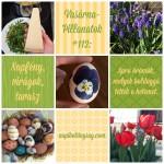 VasárnaPillanatok #112: Napfény, virágok, tavasz