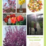 VasárnaPillanatok #113: Tavasz mindenütt!