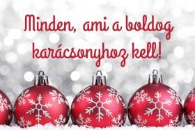 Minden, ami a boldog karácsonyhoz kell!