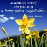 Az optimista személy…