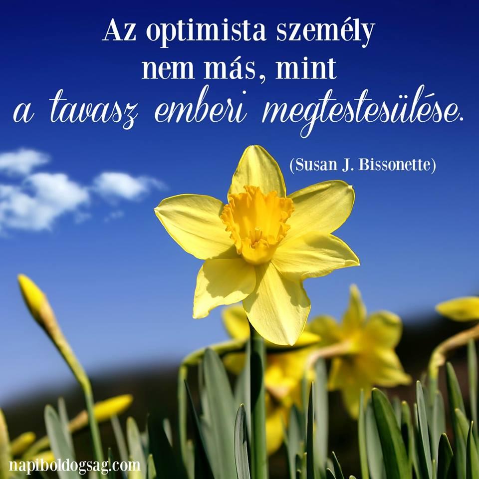 optimista ember