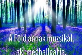 A Föld annak muzsikál, aki meghallgatja