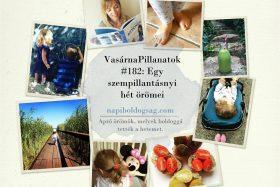 VasárnaPillanatok #182: Egy szempillantásnyi hét örömei