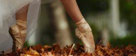 5+1 elengedhetetlen videó az ősz első napjára
