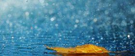 15 esős dal egy esős napra