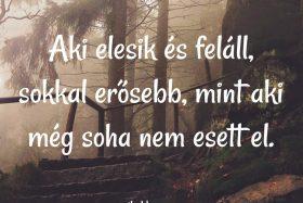 Aki elesik és feláll…