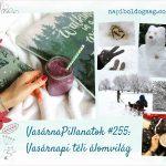 VasárnaPillanatok #255: Vasárnapi téli álomvilág